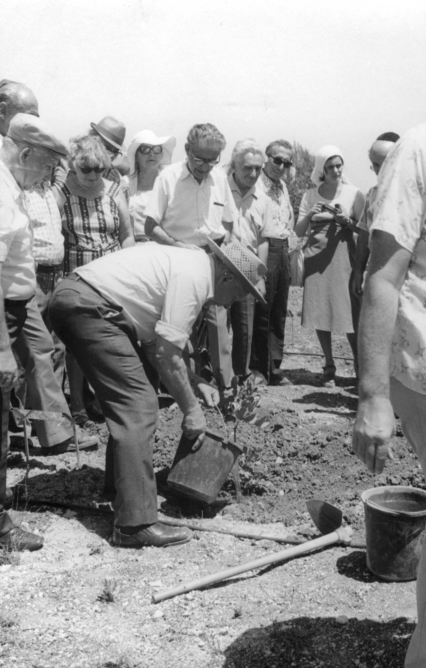 Planting the tree in honour of Janis and Johana Lipke, August 25, 1977