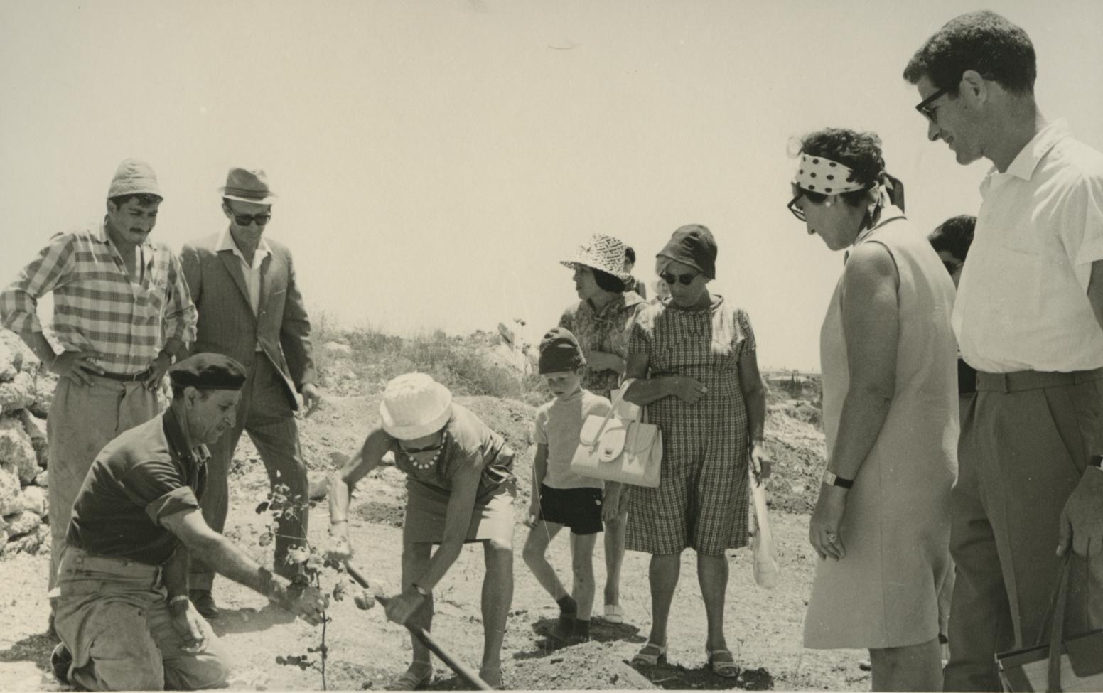 Perfekt Tree Planting Ceremony In Honor Of Gerda Valentiner. Yad Vashem. 28.07.1968